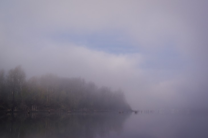 sauvie-fog-study-3