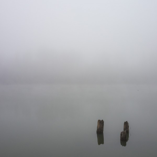 sauvie-fog-study-4-2